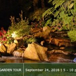 Evening Water Garden Tour 2016