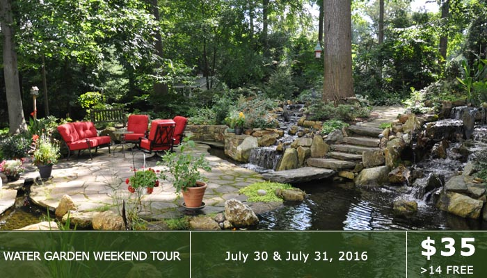 Water Garden Weekend Tour