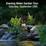 Evening Water Garden Tour 2018