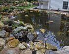 Water Garden Tour 2013