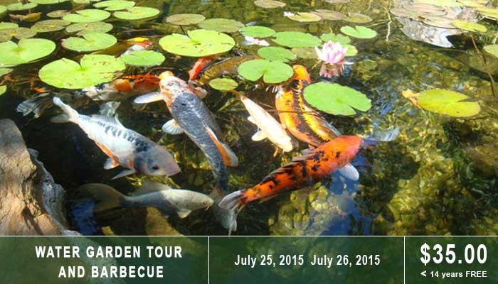 Chetser County Pond Tour