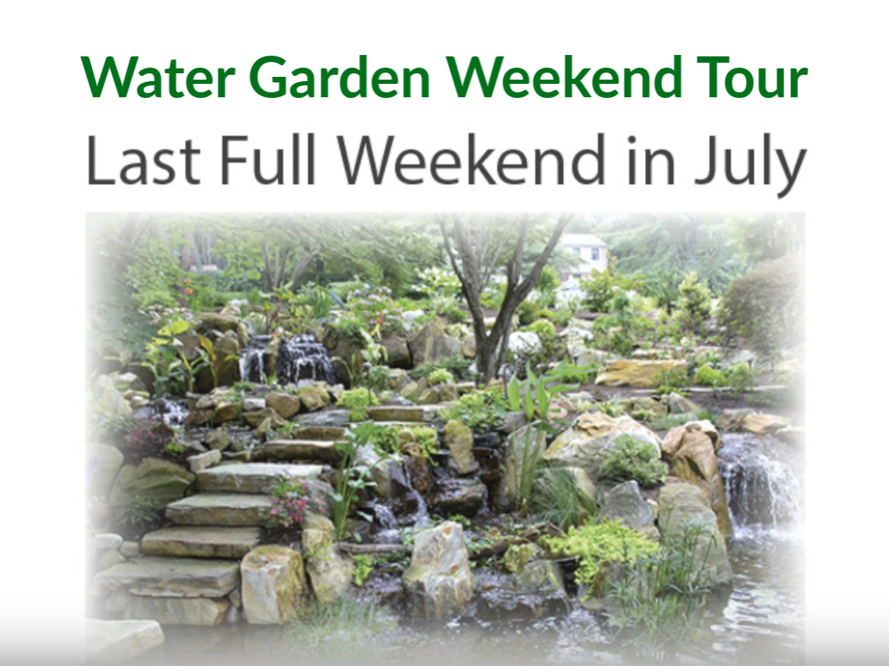 water garden weekend
